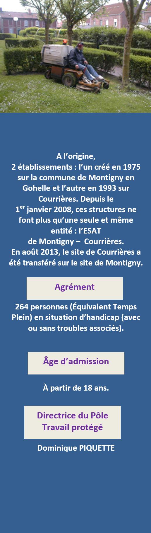 pr u00e9sentation de l u0026 39 esat montignyesat montigny